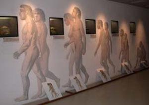 musée Tumulus de Bougon