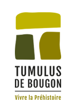 Tumulus de Bougon